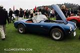 Ac Cobra 289 Roadster 1964